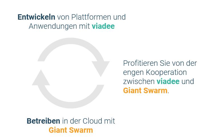Kooperation viadee und GiantSwarm_730x481